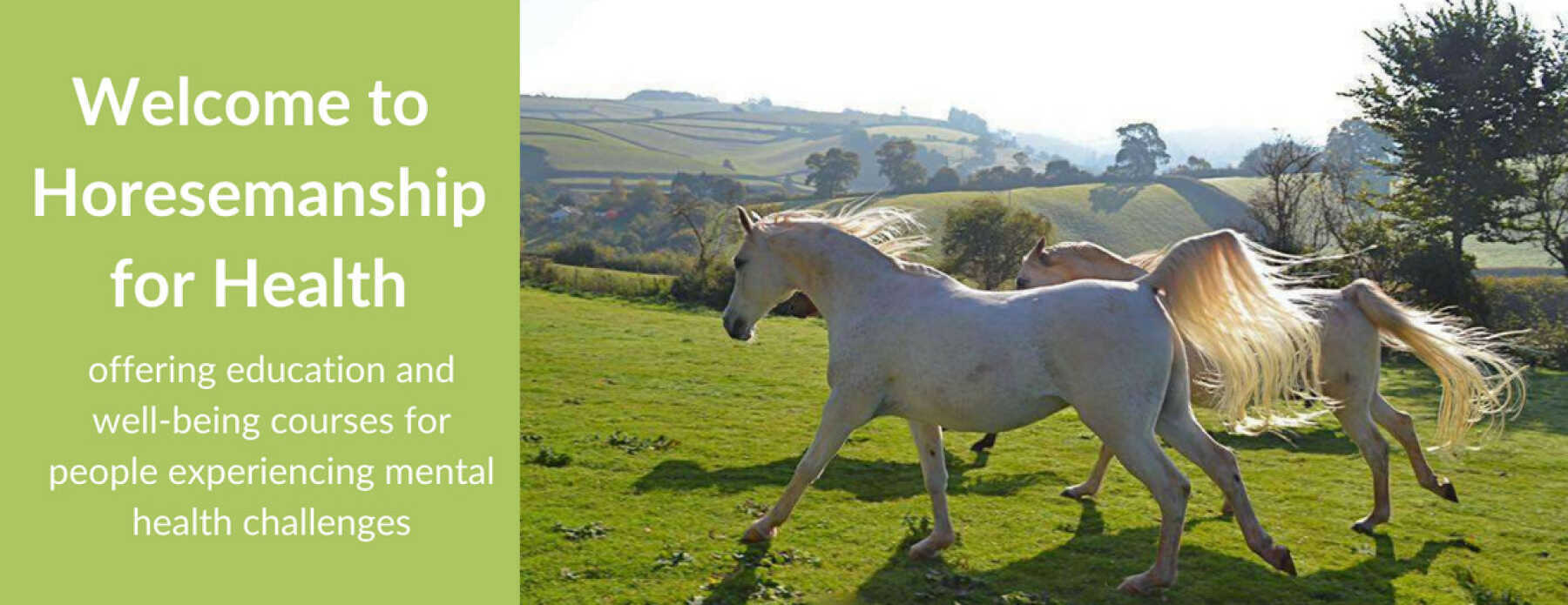 Featured Image for Horsemanship for Health UK